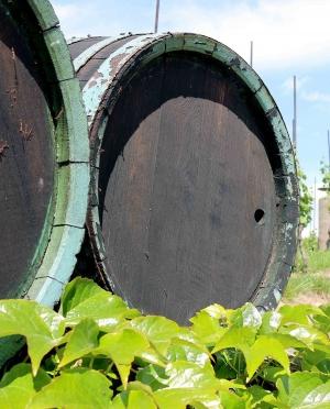 Μοσχάτο Λευκό Ημίξηρο Κρασί Πέλλας